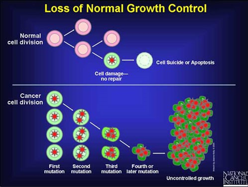 Loss of normal growth